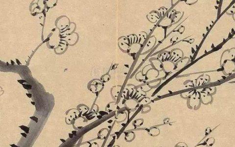 金农花卉图