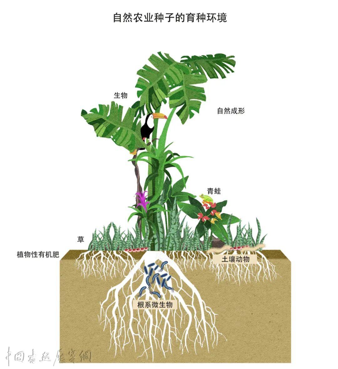 """来自河南修武的""""乡村考现学"""",山川、作物、工艺与风度……"""