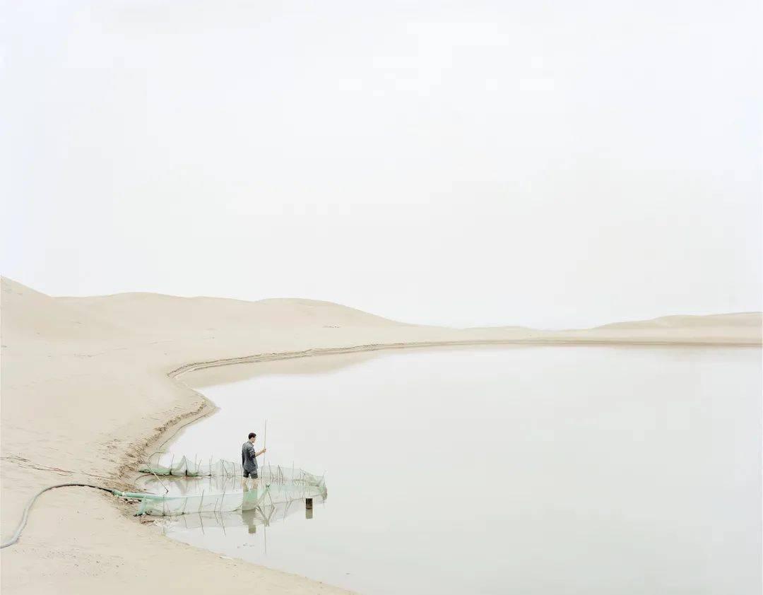 """以艺术的方式讲述黄河的故事: """"生生不息——叙事的黄河""""大展启幕"""