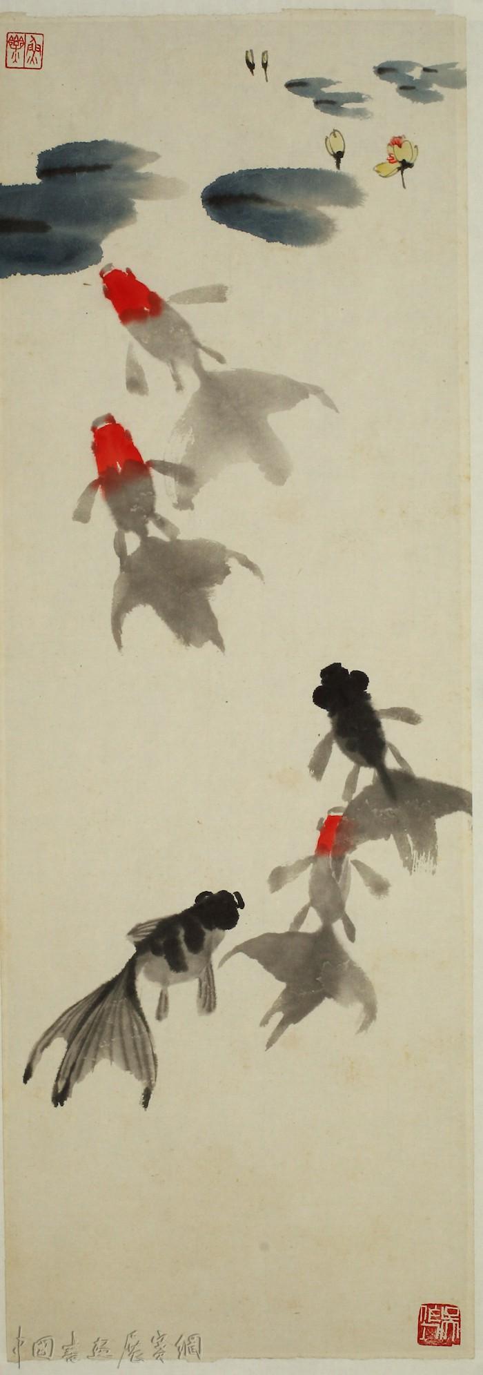 从金鱼看吴作人的中国画探索,苏州展其金鱼作品研究展