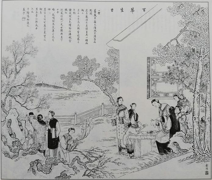 """年画之美 年画里的""""百花生日是今朝""""与十二月花神"""